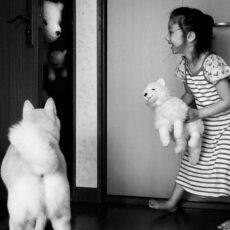 exposition photo, tokyo