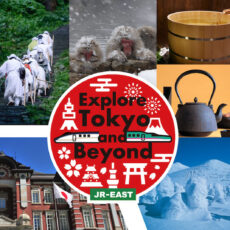 vivre a tokyo, voyager au japon