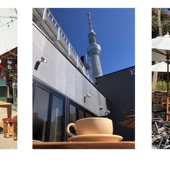 terrasse à tokyo, vivre à tokyo