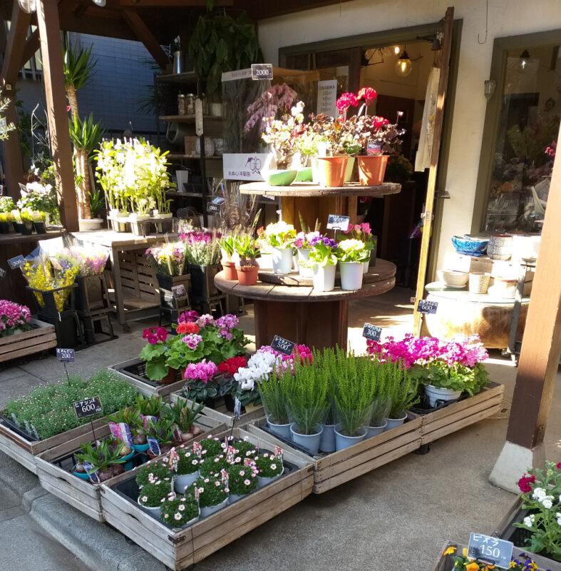 fleuriste de quartier, ici près de la gare de Nakamurabashi
