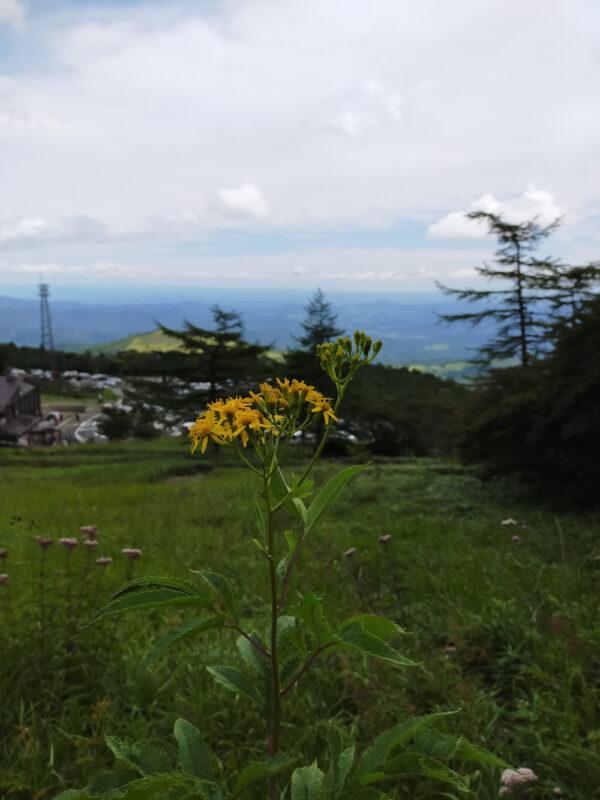 vue depuis Kirifuri Plateau